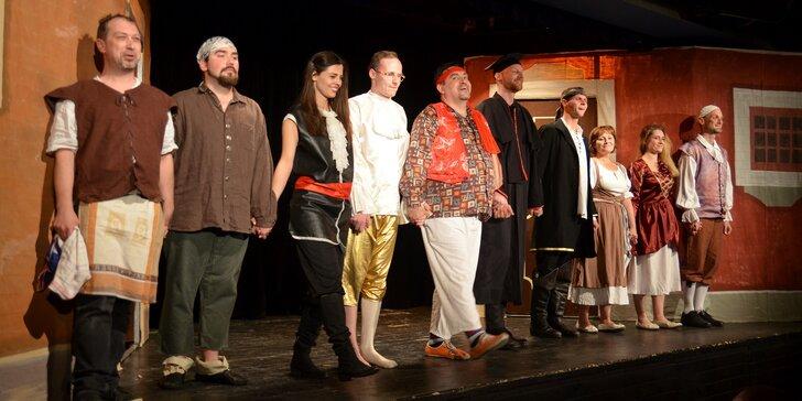 Vstupenka na představení Sluha dvou pánů v Divadle za plotem