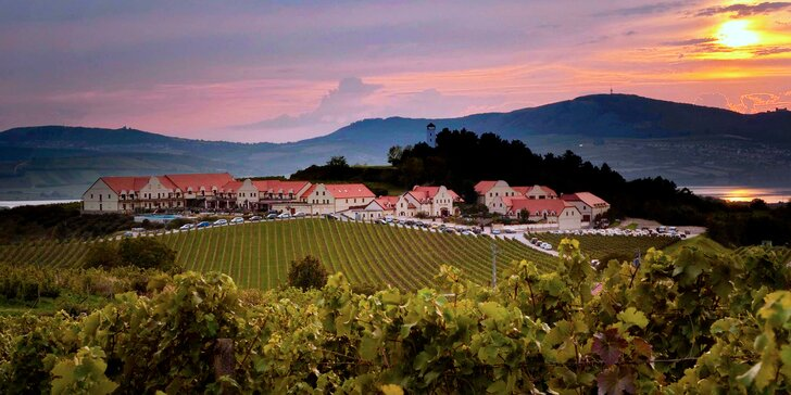 Jarní relaxace ve Vinařství U Kapličky: polopenze, wellness a degustace vín