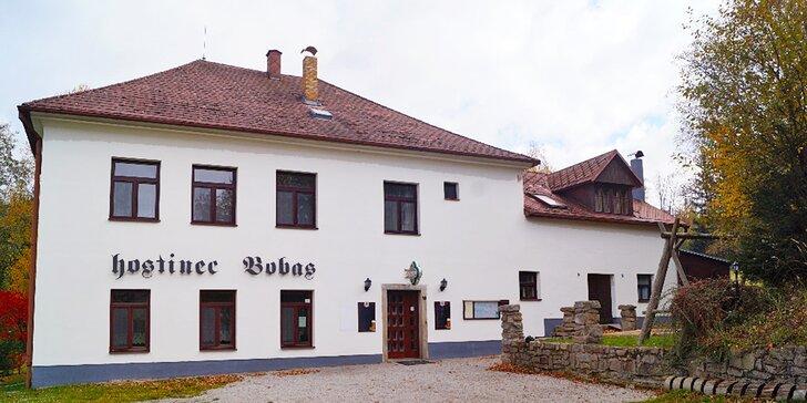Česká Kanada: ubytování se snídaní v hostinci Bobas v Albeři
