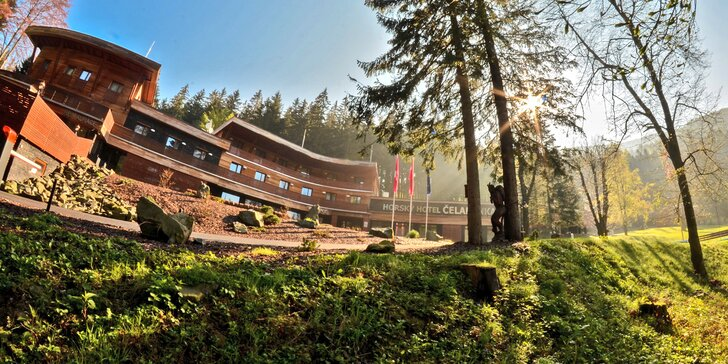4* pobyt v beskydském hotelu Čeladenka: wellness, lahodná polopenze i bobová dráha