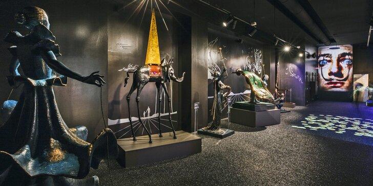 Génius surrealismu: vstup na výstavu Salvador Dalí Enigma pro děti a dospělé