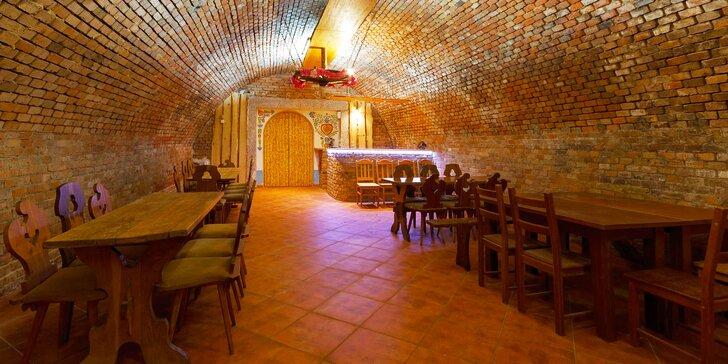 Pobyt v rodinném penzionu na jižní Moravě: polopenze, degustace vín i likérů