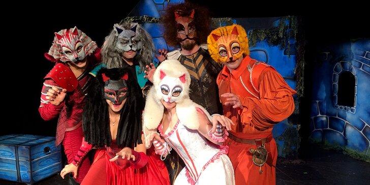 Vstupenka na dětské představení Kocour v botách v Divadle Bez Zábradlí