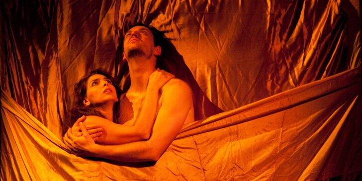Valentýnská dárková poukázka: 2 vstupenky na libovolné představení Divadla Marianny Arzumanové