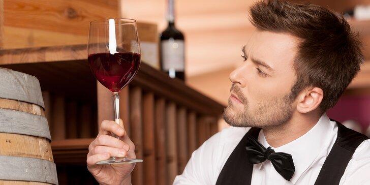 Degustace excelentních či medailovaných vín pro dva ve Wine institute ve Vršovicích