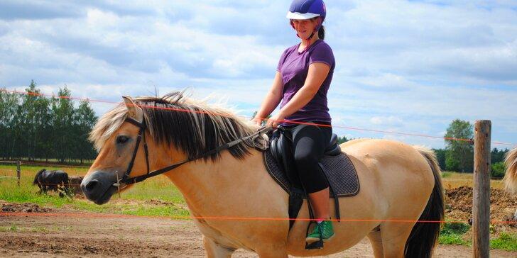 Letní příměstský tábor u koní i s ježděním pro začátečníky i pokročilé