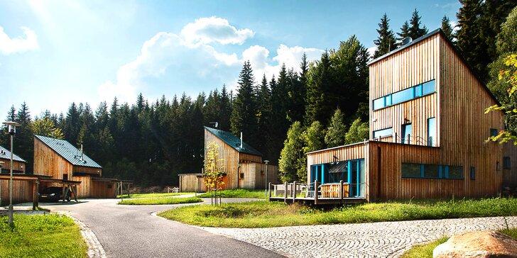Krásný horský apartmán v Harrachově až pro 10 osob