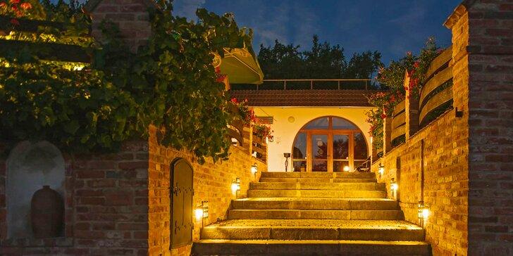 Dovolená v přírodě jižní Moravy: vyžití pro celou rodinu v krásném areálu rodinného vinařství