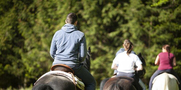 Vyjížďky a výlety na koních v Posázaví