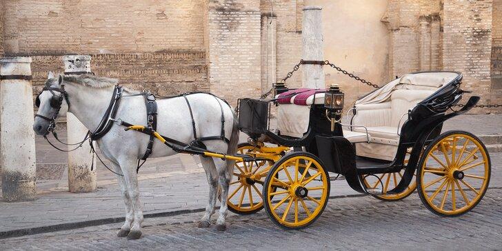 Pohádková romantika: jízda v kočáře taženém starokladrubským běloušem