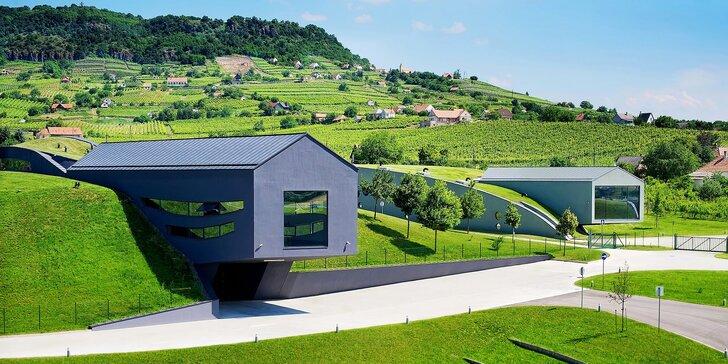 Maďarský kraj vína: 4–8 dní se snídaní v hotelovém komplexu uprostřed přírody