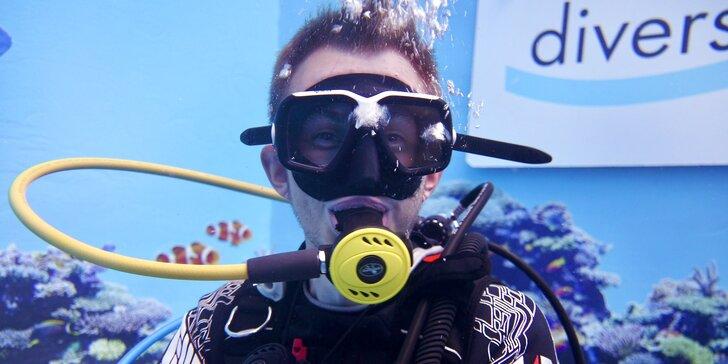 Potápění na zkoušku nebo kurz pro děti i dospělé: potápěčská jáma s instruktorem a foto na památku