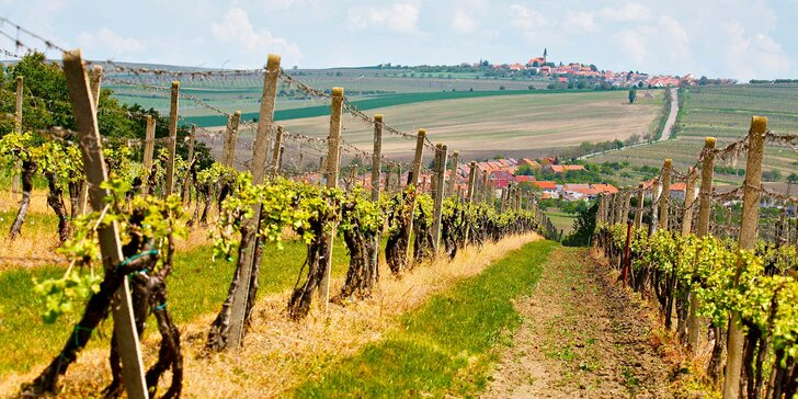 Romantika uprostřed vinic: gurmánská polopenze i volné koštování vína