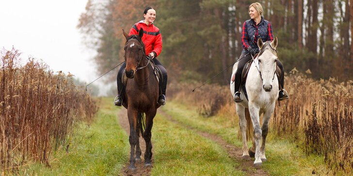 Pohlédněte na svět z koňského hřbetu: 45 či 90minutová vyjížďka do přírody