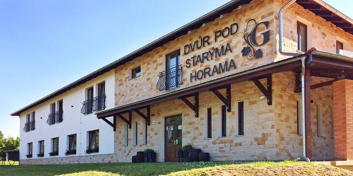Pobyt v rodinném vinařství na Slovácku: famózní víno, degustace i wellness