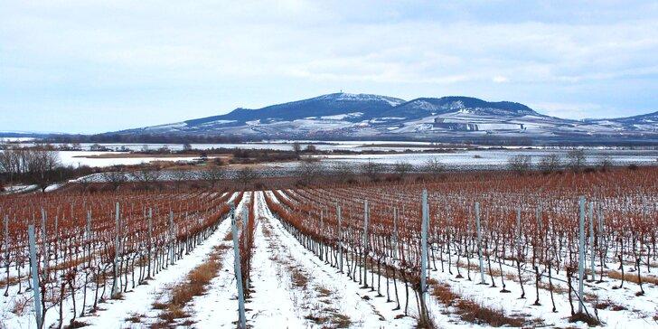 Pohodový odpočinek na jižní Moravě: polopenze i degustace mandlovice