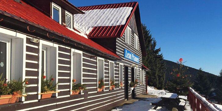 Dovolená v Krkonoších: polopenze, skvělé podmínky pro lyžaře a výlety po nejvyšších českých horách