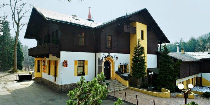 Pobyt v Liberci s výhledem na Ještěd: pokoj či apartmán se snídaní
