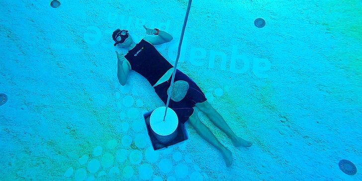 Freedivingové balíčky kurzů a tréninků pro děti i dospělé: základní lekce i kompletní výcvik