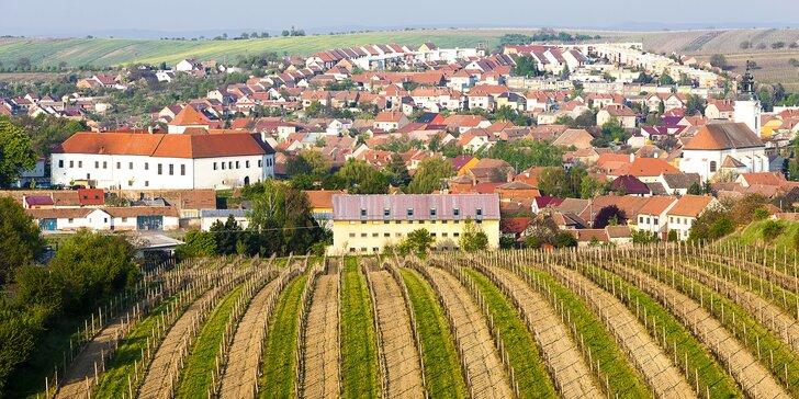 Pobyt v království vína: 1 nebo 2 noci na zámku Čejkovice s polopenzí a prohlídkou zámku