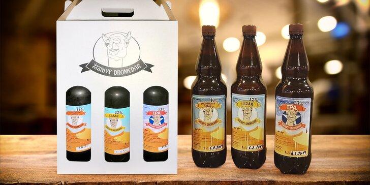 Odneste si domů 3 litry piva: 11° světlé, 12° polotmavé a 13° IPA od Žiznivého dromedára