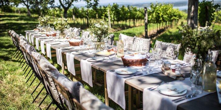 Pálavské odpoledne: neomezená konzumace vín, soutěž dovedností a večeře v jedné z nejkrásnějších vinic ČR