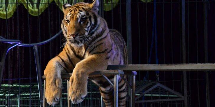 Navštivte zážitkový zvířecí areál: prohlídka areálu s průvodcem pro dítě i dospělého