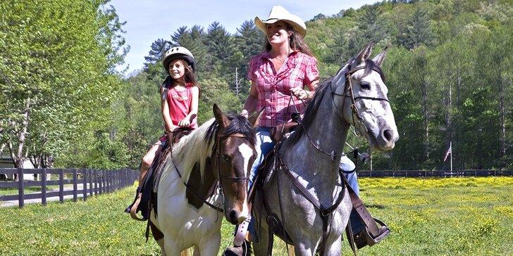 Romantika v koňském sedle: úvod do jezdeckého výcviku, teorie i 45 min. jízdy