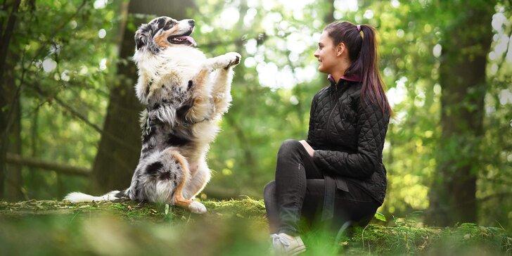 Pochopte řeč svého čtyřnohého přítele: online kurz základní poslušnosti pro dospělé psy i štěňata