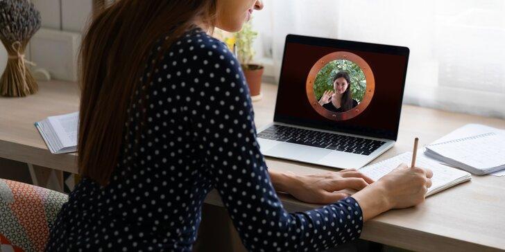 Online kurz Pohyblivých obrázků: vytvořte vlastní intro do videa, animované logo, GIFy i reklamní banner