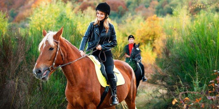 Užijte si báječný den u koní: výuka ve stáji, sedlání i vyjížďka do přírody