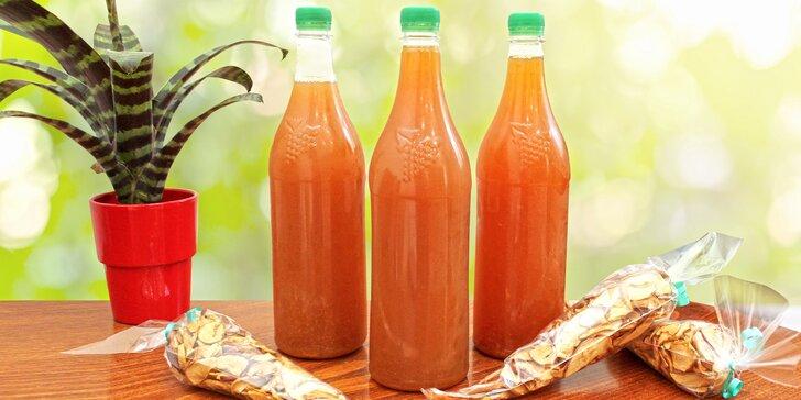 Domácí jablečné dobroty: 1 nebo 2 l moštu i balíček sušených jablek