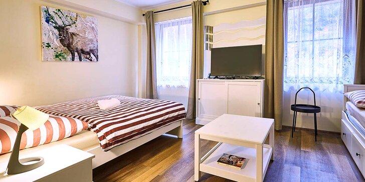 Pobyt v apartmánech pod Klínovcem: pohodlné ubytování a láhev bílého vína
