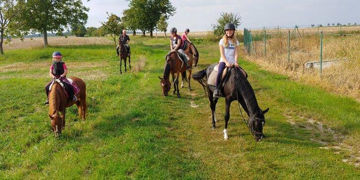 Letní jezdecký tábor pro děti od 7 let: aktivity s koňmi, hry, zábava i výlety