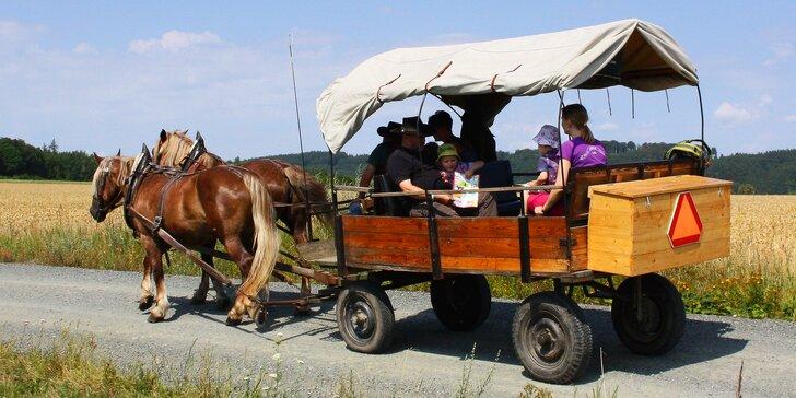 Výlet kousek od Prahy: Rodinná jízda koňským povozem na Křivoklátsku