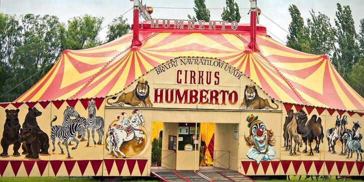 Hurá do Cirkusu Humberto na zbrusu novou show: akrobati, klauni i exotická zvířata v Novém Jičíně