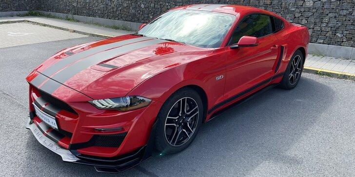 Zapůjčení Fordu Mustang GT Shelby na 6, 12 či 24 hodin