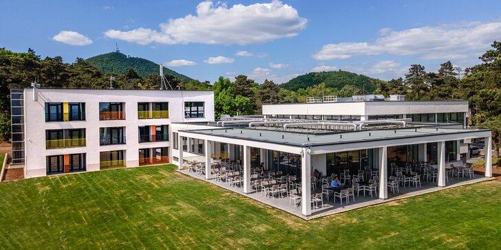 Pobyt v maďarské oblasti Tokaj: polopenze a adrenalinový park či degustace vína