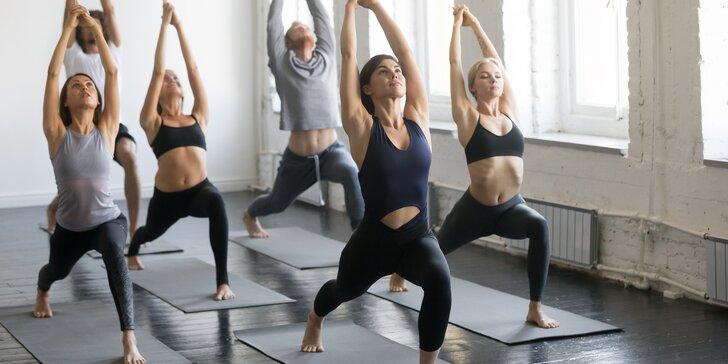 Zpět do formy: 1 vstup nebo permanentka na 10 lekcí kondičních či pomalých forem cvičení