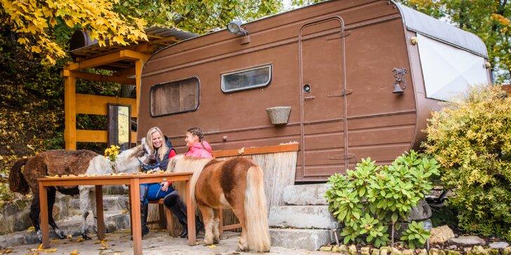 Pobyt se snídaní v rančerském karavanu, maringotce nebo chatce mezi zvířátky s možností vyjížďky na koních.