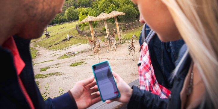 Za lachtany přes celý svět v Zoo Lešná: napínavá venkovní hra na cca 3–5 hodin až pro 6 osob