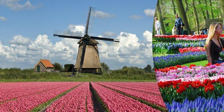 1494 Kč za víkendový zájezd do Holandska. Ráj květin a tulipánů Keukenhof, prohlídka Amsterdamu s průvodcem i skanzen s větrnými mlýny.