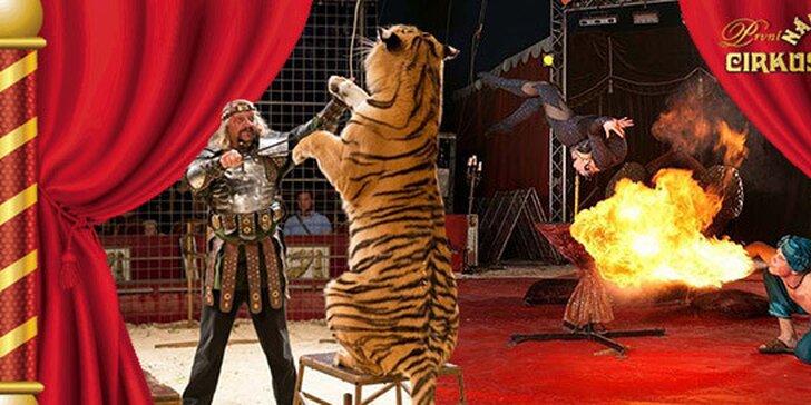 Vstupenka do Národního cirkusu Jo-Joo