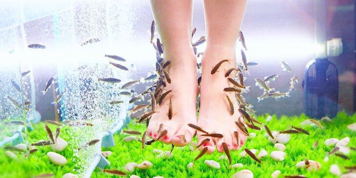 Koupel nohou s rybkami Garra Rufa: 20-40 minut nebo permanentka