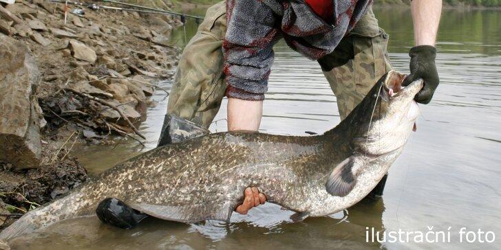 Pojďme na ryby - celodenním lovení sumců na okraji Orlové