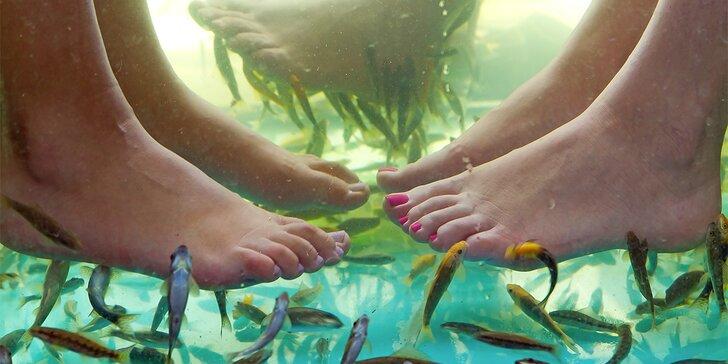 Relaxační a zábavná koupel s rybkami Garra Rufa