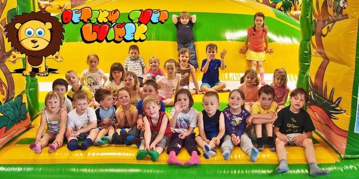Dětský svět Lvíček: Celodenní vstup pro dítě do 15 let