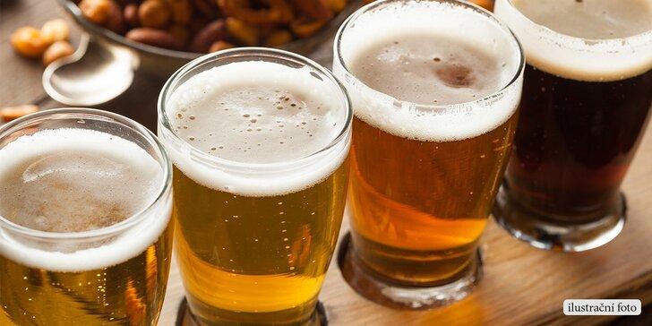 Degustace světových či českých piv z minipivovarů s výkladem