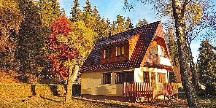 Pohodová dovolená na Lipně: Ubytování v apartmánu pro 4 - 5 osob
