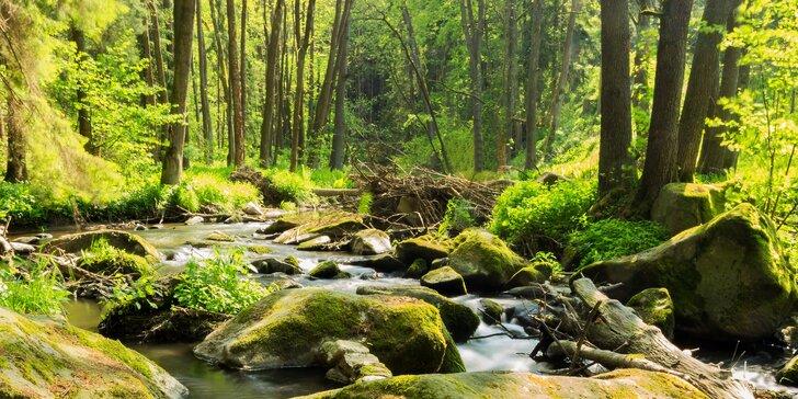 Tři dny nerušeného relaxu v přírodě na Vysočině pro dvě osoby s polopenzí